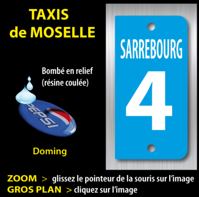 TAXI Moselle plaque d'identification 1806-18-T5